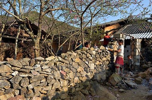 Xếp đá tạo thành tường bao cho ngôi nhà truyền thống của người H Mông.