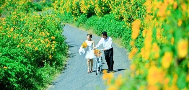 Tháng 3 cũng là thời điểm hoa dạ quỳ rực rỡ nhất trong năm.