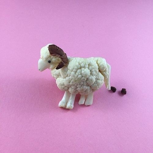 Chú cừu trắng muốt được tạo hình độc đáo.