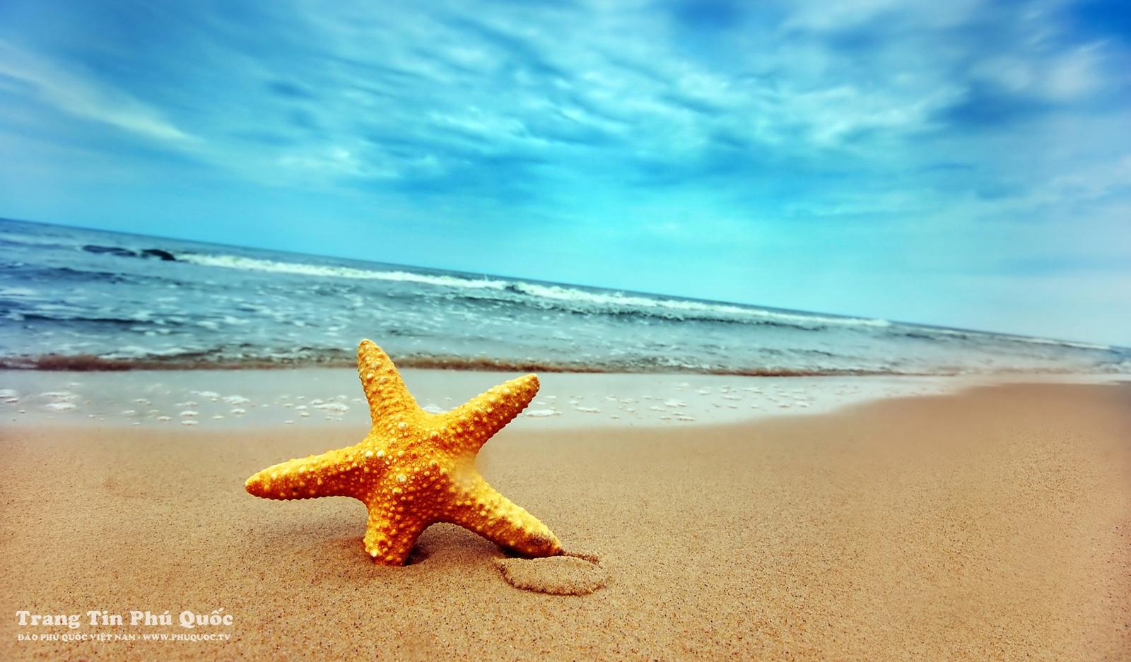 Bãi Dài, cát trắng và mịn cùng với màu xanh của biển tạo cho nơi đây khung cảnh nên thơ, lãng mạn
