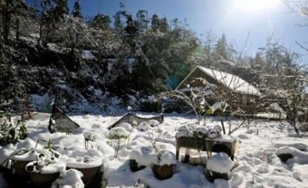 Tuyết rơi vàodịp cuối tuần, khiến lượng người dưới xuôi đổ lên Sapa rất đông.