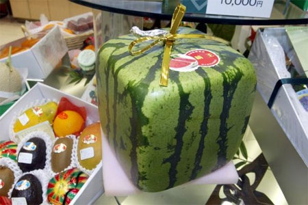 """Dưa hấu vuông có thể được xem là một trong những phát minh """"vĩ đại"""" nhất của người Nhật."""