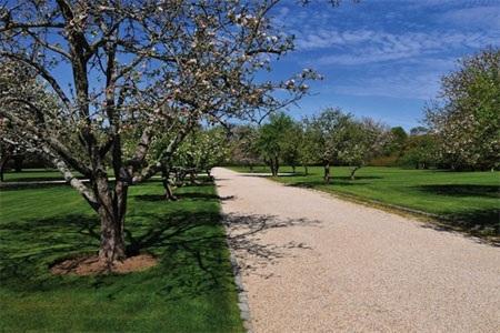 Dọc theo con đường dẫn vào dinh thự Normandy House là hai hàng cây táo.