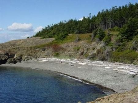 Khung cảnh trên đảo còn rất hoang sơ.