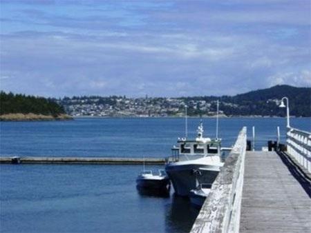 Bến tàu của đảo lý tưởng để đỗ du thuyền.