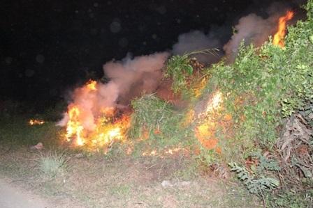 Hiện trường vụ cháy đồng cỏ khô đất dự án Khu LHTT Rạch Chiếc chiều tối 21/4