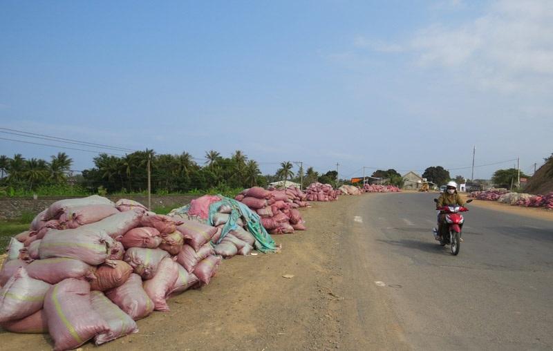 """""""Núi"""" phân bò chất ven quốc lộ 1 đoạn qua xã An Cư (huyện Tuy An, Phú Yên) chờ xe tải đến chở."""