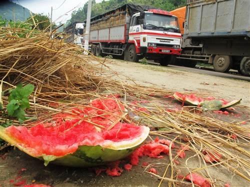 Do nắng nóng nhiều ngày khiến một lượng dưa hấu chưa kịp xuất khẩu đã bị hỏng.