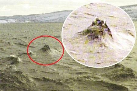 Bức ảnh được Jonathan Bright chụp lại, được cho là có sự xuất hiện của quái vật Loch Ness