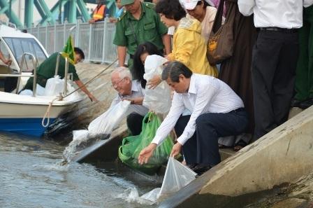 Chủ tịch thành phố (tóc bạc) thả cá về môi trường tự nhiên