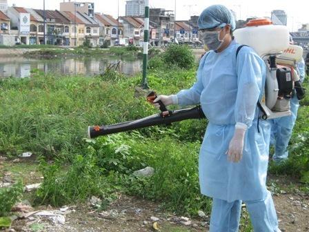 Việc phun thuốc diệt muỗi chỉ là giải pháp tạm thời