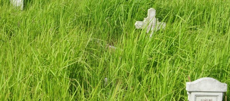 Trường bắn Long Bình chi chít mộ trước đây gắn với nhiều chuyện ly kỳ, ma mị