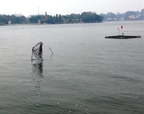 Nhiều kiểu lưới hứng bóng khác nhau được cắm trên mặt hồ.