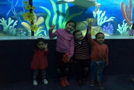 Thuỷ cung lớn nhất Việt Nam sẽ là địa điểm thú vị cho trẻ em.