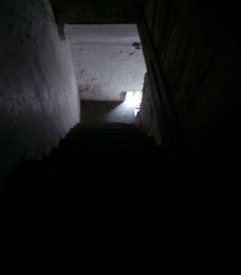 Những bậc cầu thang dẫn lên gác 2 của con gõ đượcbao trùm một màu đen.
