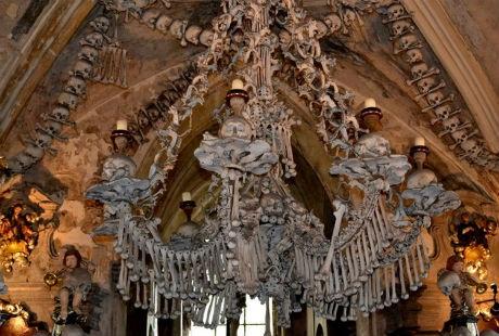 Chiếc đèn được tạo bằng mọi loại xương trên cơ thể người.