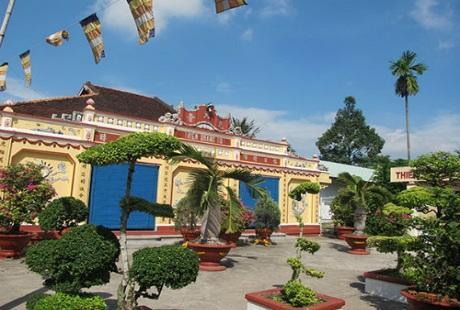 Đổ xô đi xem cây sao có dáng tượng Phật