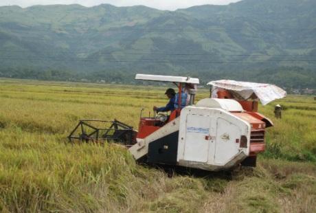 Máy móc kỹ thuật cao đã được người dân nơi đây áp dụng vào sản xuất