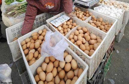 """Trung Quốc: Điều tra trứng luộc """"nảy"""" như bóng - 1"""