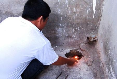 Một người dân phường Đạo Long đang gom chim yến chết và dùng xăng để đốt
