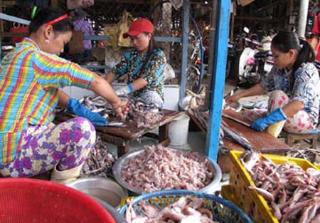 Người dân vẫn vô tư chế biến chả cá tại chợ Tuy Hòa. Ảnh: Tấn Lộc