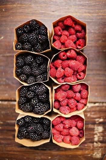 1. Các loại quả mọng