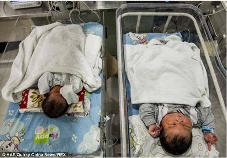 Xiao Pang bên cạnh một em bé sơ sinh bình thường