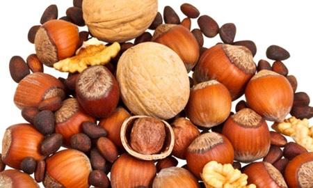 3. Các loại hạt