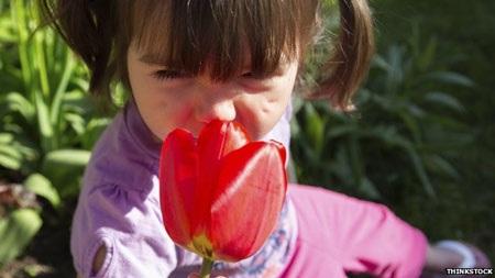 Mũi có thể ngửi 1.000 tỷ mùi