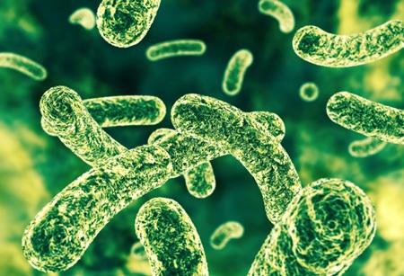 Probiotic không có tác dụng chữa đau bụng ở trẻ sơ sinh