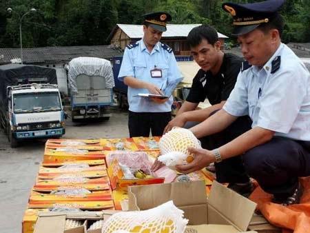 Hải quan kiểm tra hàng nhập khẩu qua cửa khẩu Tân Thanh. (Ảnh: Trần Việt/TTXVN)