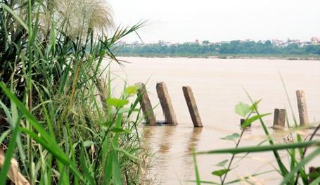 Xác nạn nhân vướng vào cọc kè bờ sông.