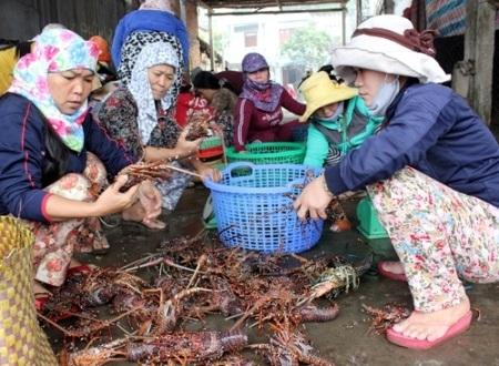Chị em phụ nữ giúp chồng bán lộc biển từ Hoàng Sa, Trường Sa trở về.
