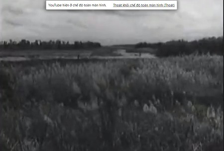 Vùng Đồng Tháp Mười sau những năm giải phóng chỉ là vùng đất hoang dã