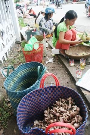 Mùa nấm tràm trên đường phố Huế - 5