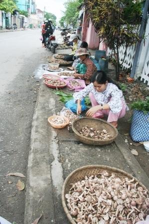 Mùa nấm tràm trên đường phố Huế - 9