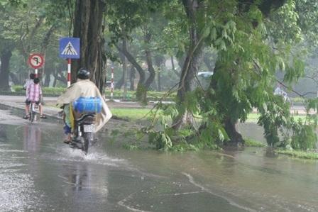 Đường phố Huế ngập trong trận mưa lớn - 2