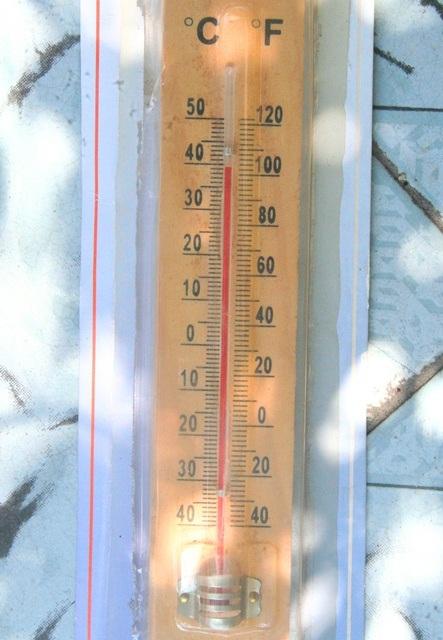 Một số nơi khác có cây xanh che mát hơn, nhiệt độ được đo gần 40 độ