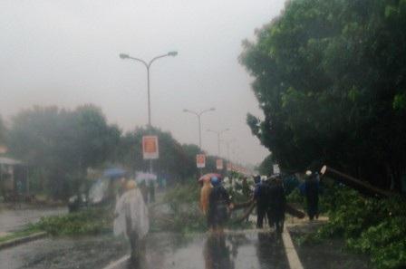 Nhiều cây gãy đổ chắn ngang QL1A qua Thị trấn Lăng Cô, huyện Phú Lộc