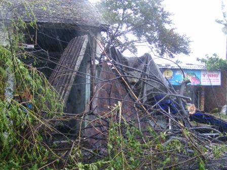 1 căn nhà ở huyện Phú Lộc bị cây đổ làm sập nhà