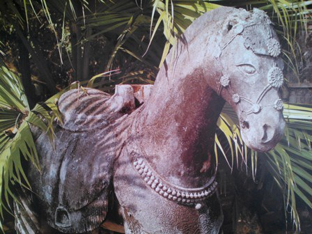 Con ngựa được mang nhiều vật trang trí rất đẹp