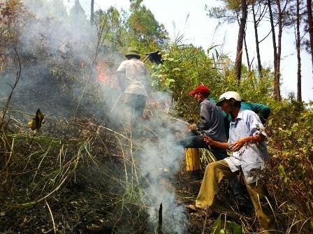 Đám cháy ở vị trí rất dốc trên sườn núi Ngự Bình.