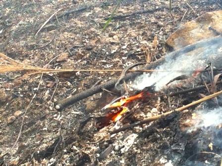 Sau khi dập tắt đám cháy, nhiều đám lửa nhỏ vẫn còn âm ỉ cháy