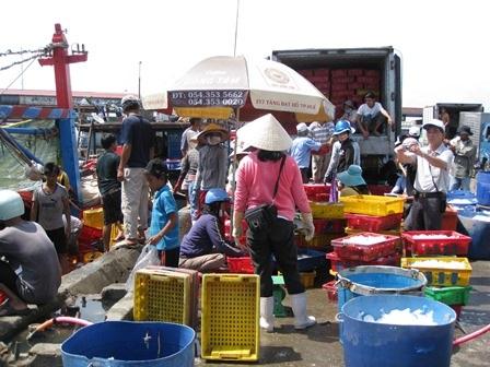 Cảng cá Thuận An tấp nập người mua bán.