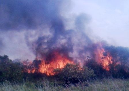 Đến gần chiều tối vẫn còn cháy lớn