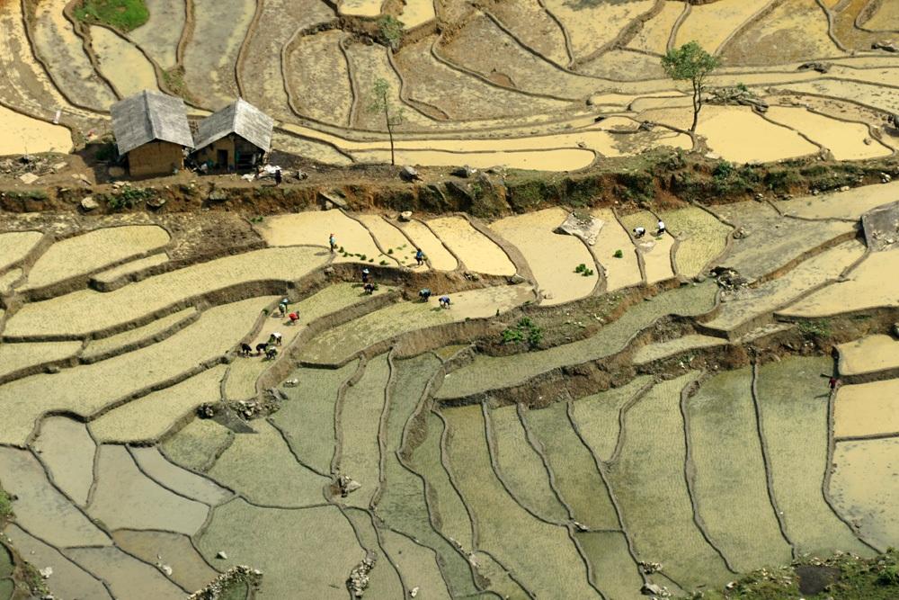 Một cánh đồng đang tích nước của xã Ngải Thầu thay đổi màu sắc khi trời hửng nắng.