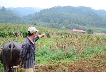 """Người dân xã Cam Cọn (Bảo Yên) rất lo lắng trước tình trạng tàu cuốc """"nuốt"""" bãi mầu ven sông"""