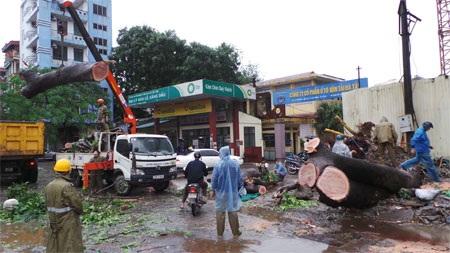 Hà Nội, Hải Phòng bình yên sau bão Haiyan