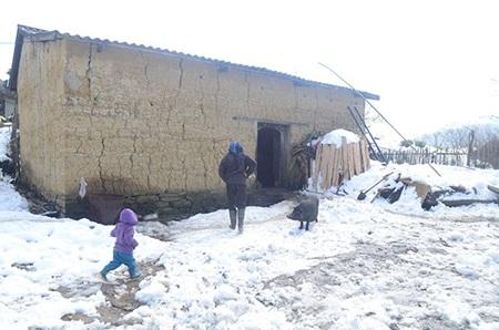 Hầu như nhà nào ở xã Ý Tý, sân trước cửa cũng bị phủ trắng tuyết