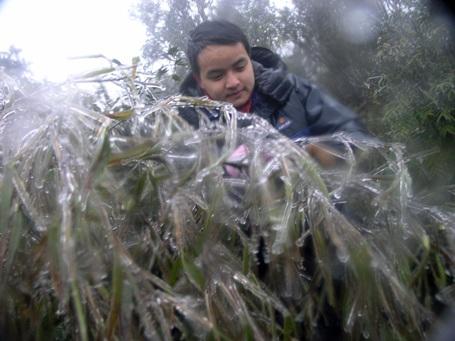 Băng tuyết trên đèo Ô Quý Hồ xuất hiện đầu tháng 1/2011. (Ảnh: Phạm Ngọc Triển)